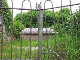 10. Carrick Church , Co. Kildare
