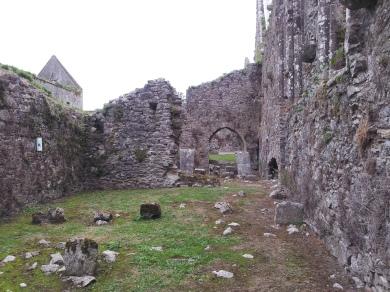 16. Bridgetown Priory, Co. Cork