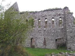 29. Bridgetown Priory, Co. Cork