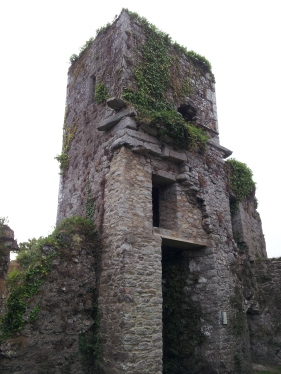 37. Bridgetown Priory, Co. Cork