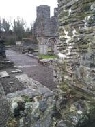 34. Mellifont Abbey, Co. Louth