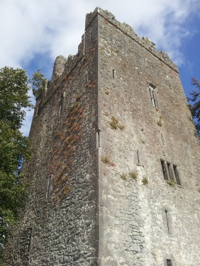 08. Burnchurch Castle, Co. Kilkenny