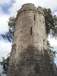 11. Burnchurch Castle, Co. Kilkenny