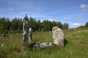 12. Kilranelagh Graveyard, Co. Wicklow