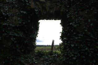 06. Kilmanaghan Church, Co. Offaly