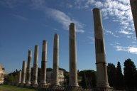 65. Roman Forum, Rome, Italy
